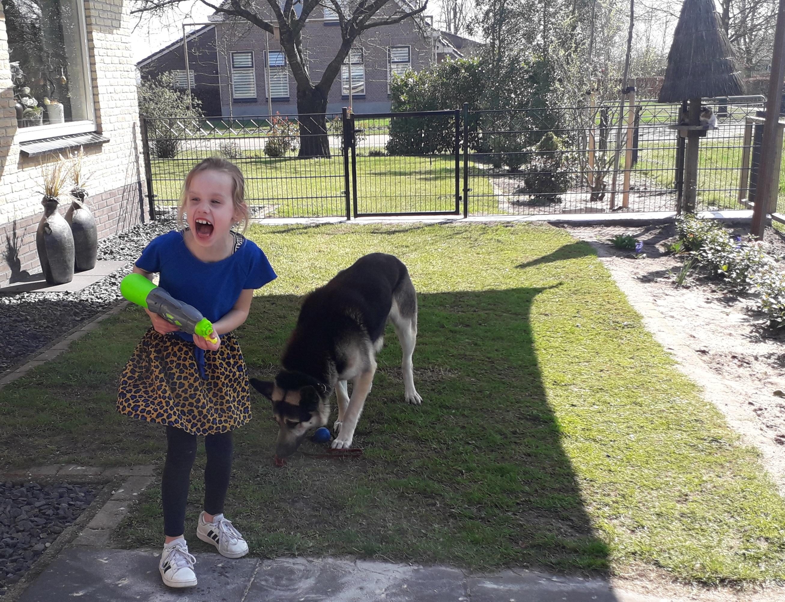 Droomtuin voor kinderen: 4 ideeën