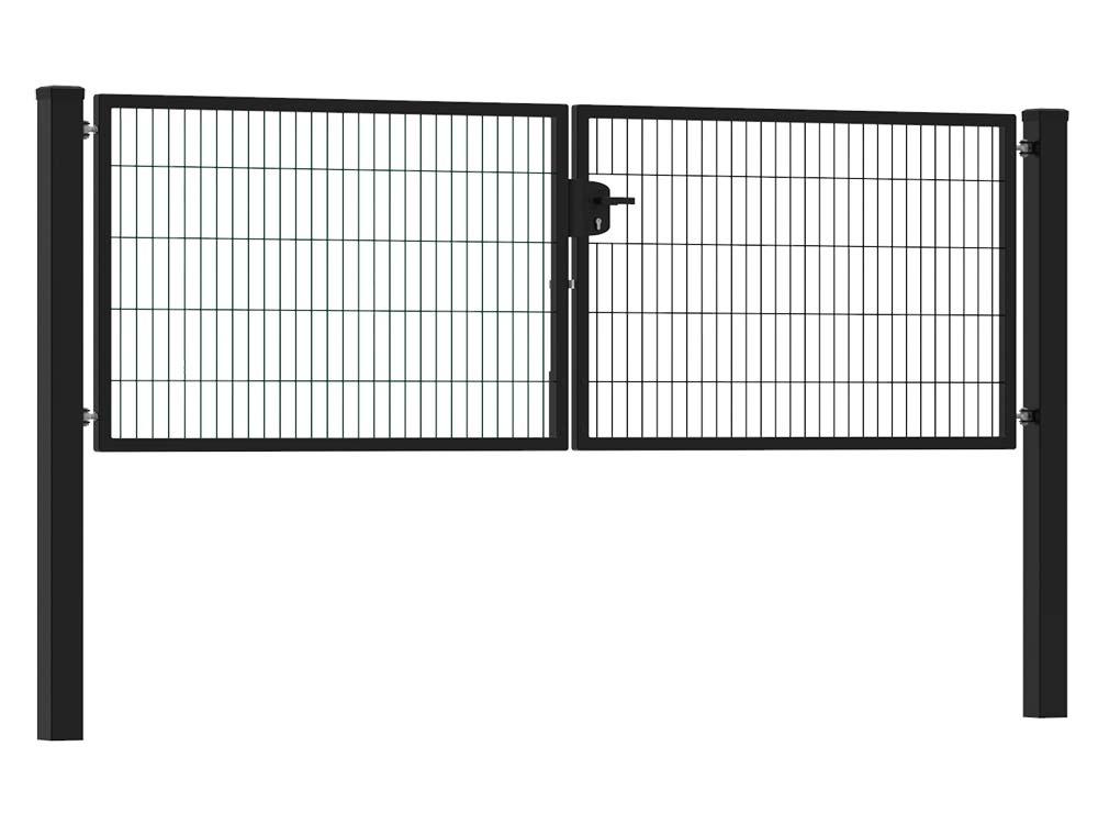 Afbeelding van Dubbele tuinpoort 300 x 100 cm (bxh) Zwart RAL9005 premium